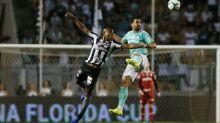 Botafogo x Palmeiras   Onde assistir, prováveis escalações, horário e local; Teste para goleiros reservas