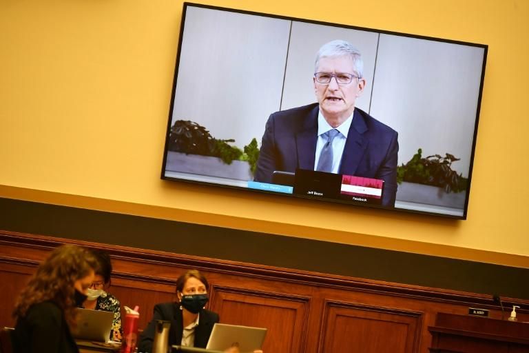 Apple CEO Tim Cook testifies before the House Judiciary Subcommittee on Antitrust, Commercial and Administrative Law (AFP Photo/MANDEL NGAN)