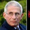 "Dr. Anthony Fauci Says Coronavirus Cure Claims By Netflix's 'Pandemic' Doctor Is ""Old Concept"""