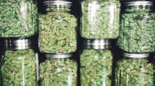 3 Top Cannabis Stocks to Buy Right Now