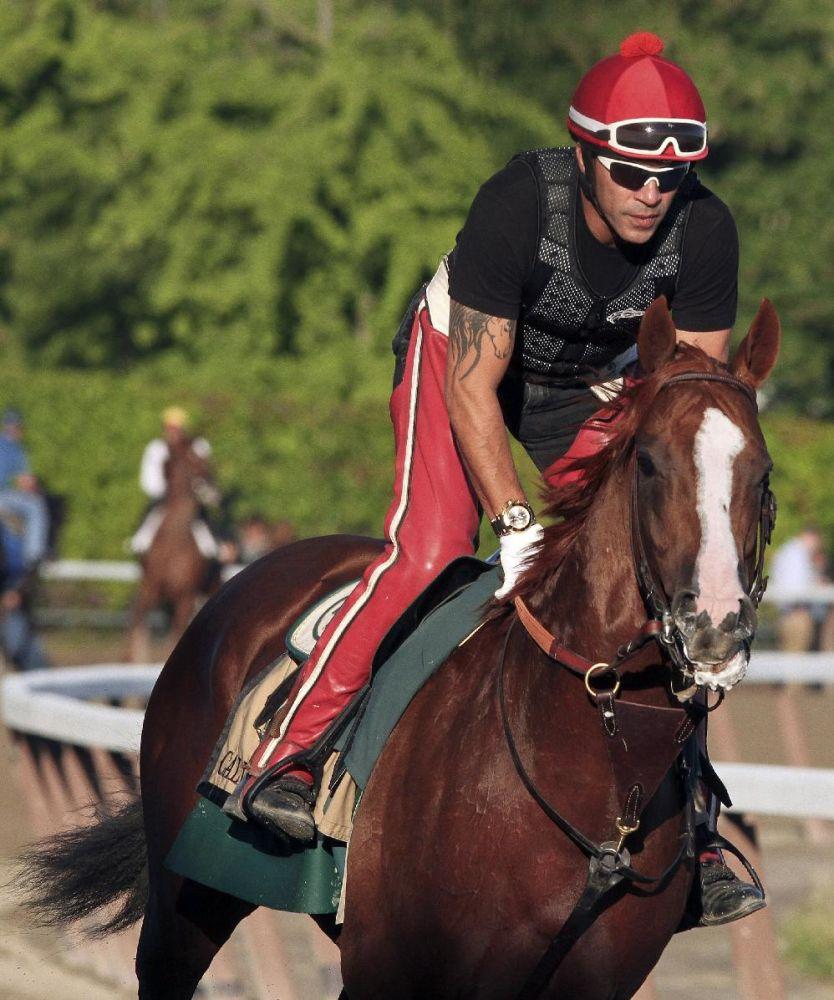 Chrome fever picks up at Belmont Stakes