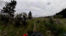 Watch bear and bicyclist get spooked in close encounter on woodsy British Columbia trail