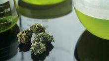 3 Best Marijuana Biotech Stocks for 2018
