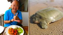 Australian diplomat slammed for eating endangered turtle