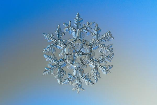 Snowflake Prices IPO Above Indicated Range To Raise $3.4BSnowflake Ipo News