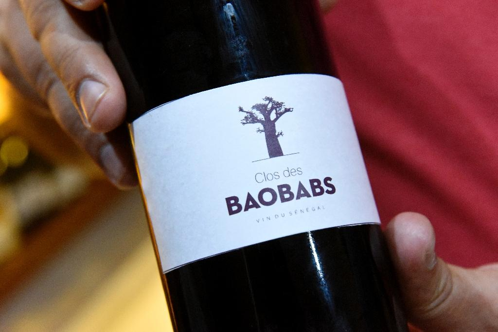 """""""Le Clos des Baobabs"""" -- """"the Baobab Field"""" in English -- is Senegal's first vineyard, situated an hour's scenic drive from the capital Dakar (AFP Photo/Seyllou)"""