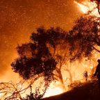 California Fires Update: Thomas Blaze Is Now Among Worst Wildfires in State's Modern Era