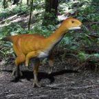 'Frankenstein' dinosaur could be the 'missing link', researchers say