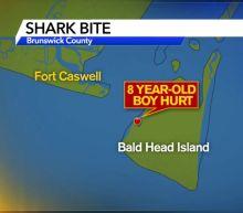 Shark bites 8-year-old boy at North Carolina's Bald Head Island