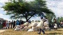 ONU: fome ameaça recorde de 45 milhões de pessoas na África Austral