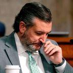 Former Bush Strategist Responds To Ted Cruz Calling Critics 'A**holes': 'Buy A Mirror'