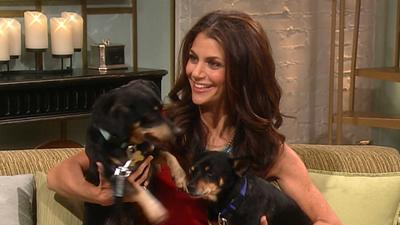 Samantha Harris Urges You To Adopt A Furry Friend And Talks 'Stars Earn Stripes'