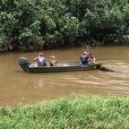 Surfer Laird Hamilton Saves Bison From Kauai Floods