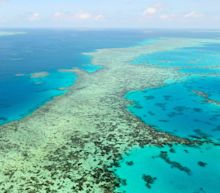 Australia blames China for UN move to put Great Barrier Reef on endangered list