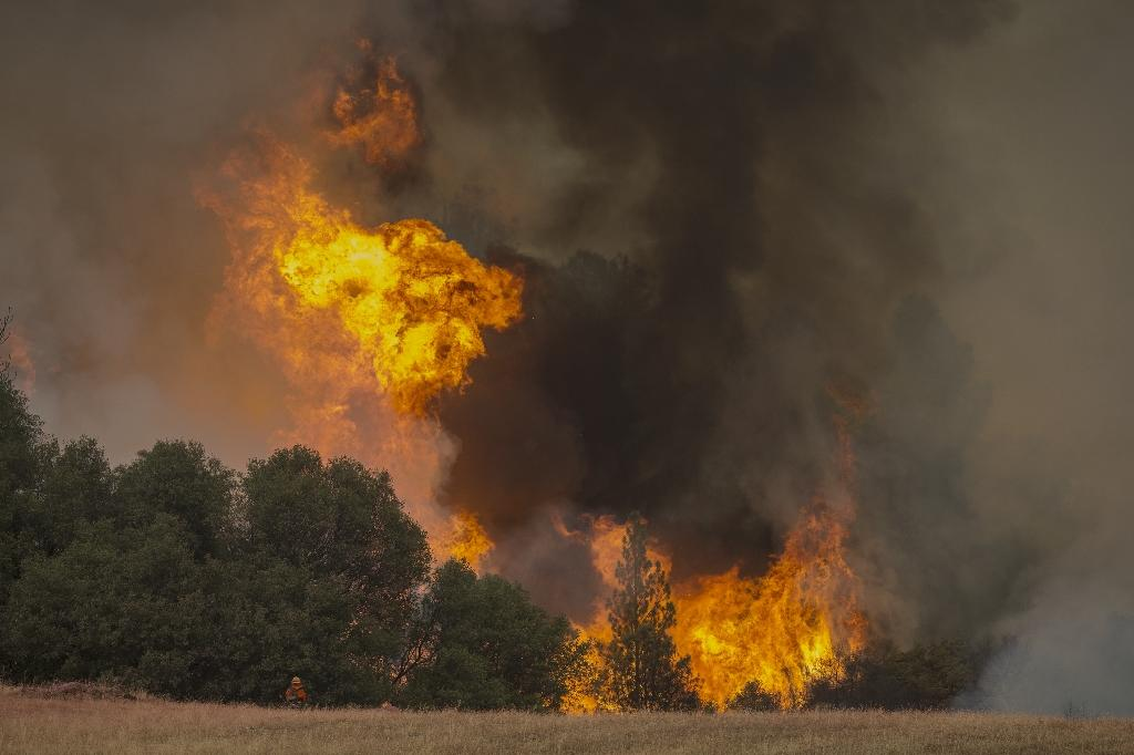 Tall flames rise behind a firefighting inmate hand crew member at the Butte Fire are seen on September 13, 2015 near San Andreas, California (AFP Photo/David McNew)