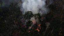 Desmatamento na Amazônia brasileira é dois terços menor em terras indígenas