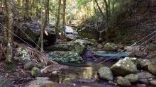 The Hidden Side of the Gold Coast