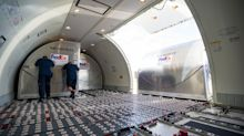 The truth about aircraft stowaways – could you survive in the cargo hold of a plane?