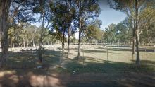 Woman robbed while 'visiting son's grave'