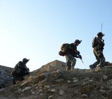 Afghanistan sends team to join Taliban peace talks in UAE