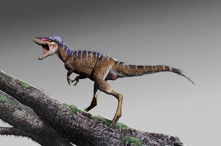 Modest dinosaur dubbed 'harbinger of doom' set stage for T  rex