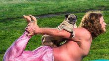 Pug yoga calendar: un anuario muy divertido