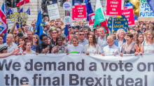 Public support for a second Brexit vote increases as less than a fifth of voters back Theresa May's Chequers proposals