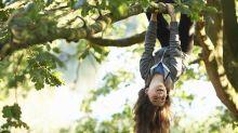 Morar perto de árvores melhora a saúde mental e reduz o risco de depressão