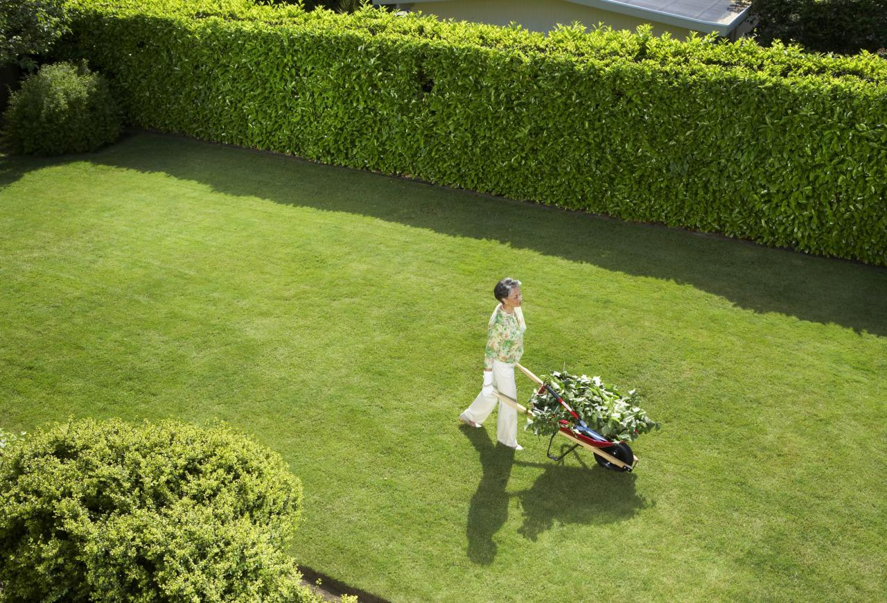 <p>That's right, the NWF is declaring a triple-bad on your neighbor's impeccable, leaf-free lawn: the environment suffers, the garden suffers, and small animals like chipmunks and butterflies may die. (What are you people, <i>monsters?) <i>(Photo: Thinkstock)</i><br></i></p>