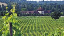 Boutique wine hotel to open at UK's largest vineyard