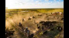 Filmmaker behind 'Yellowstone,' 'Sicario' to buy historic Texas 6666 Ranch, reports say