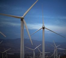 IEA hikes green energy forecast after 'turning point' year