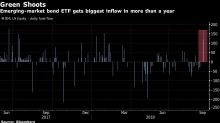 Is the Emerging MarketsSell-Off Over? Fund Sees Biggest Inflow In a Year