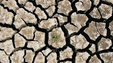 Investors With $35 Trillion Want Government Action on Climate