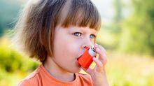 Grass Pollen Can Help Predict Asthma, Hay Fever
