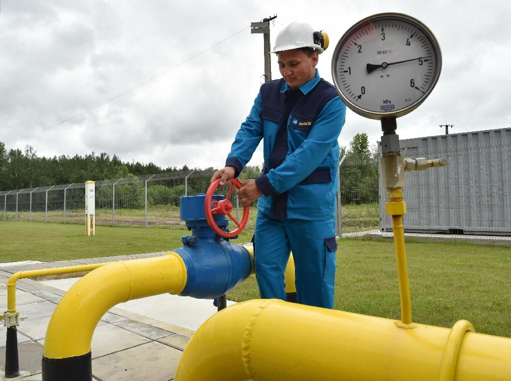 Ukraine has been trying to wean itself off its reliance on Russian gas (AFP Photo/Sergei Supinsky)