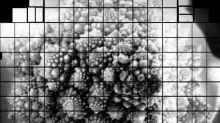 Enorme foto de una coliflor podría ayudarnos a resolver los misterios del universo