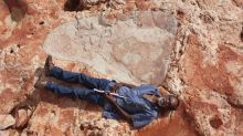 Biggest dinosaur footprints ever seen discovered in 'Australia's Jurassic Park'