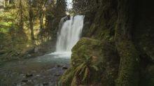 Vacanze: scopri i parchi nazionali americani