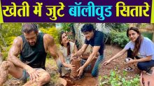 Salman Khan and other Bollywood Celebs turned into farmers during Lockdown