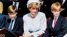 'William and Harry would trade everything to get Princess Diana back'