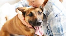 Pet ownership may just be the cuddliest way to beat the winter blues