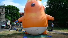 Donald Trump will 'probably like' the protest baby balloon set to fly over Parliament during visit