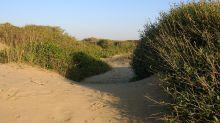 Vacanze tra la sabbia, ecco le dune più spettacolari d'Europa