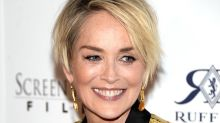 Sharon Stone Is Not Interested in Dating, Doesn't Want 'Sex With a Stranger'