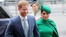 Harry and Meghan's Sussex Royal director quits as couple plans non-profit