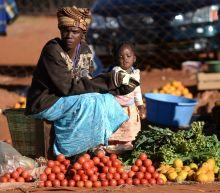 Zimbabwe bans fruit, vegetable imports to save scarce forex