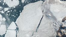 Milne Ice Shelf: Satellites capture Arctic ice split