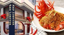 龍蝦迷必到 Red Lobster香港新店推獨有港式避風塘炒龍蝦