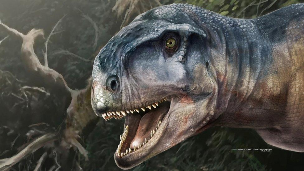 Skull of dinosaur called 'one who causes fear' found in Patagonia – Yahoo News Australia